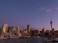 Top 5 Things To Do In Auckland